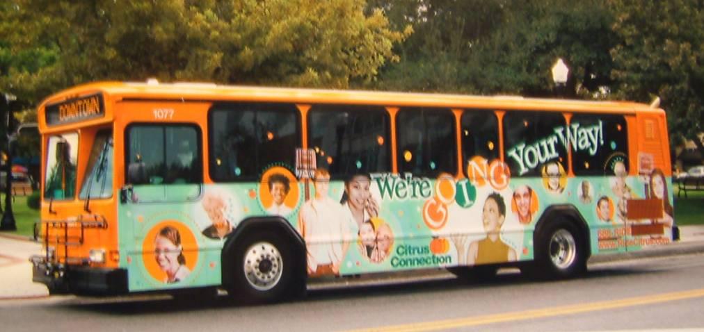 2006 - Citrus Connection