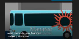 2019 - Manatee County Area Transit